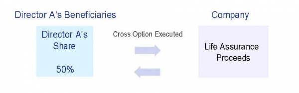 2typical_x_option_agreemernt_executed_diagram